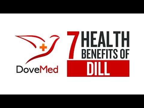 7 Health Benefits Of Dill
