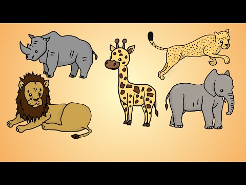 Draw Five: How to Draw African Animals