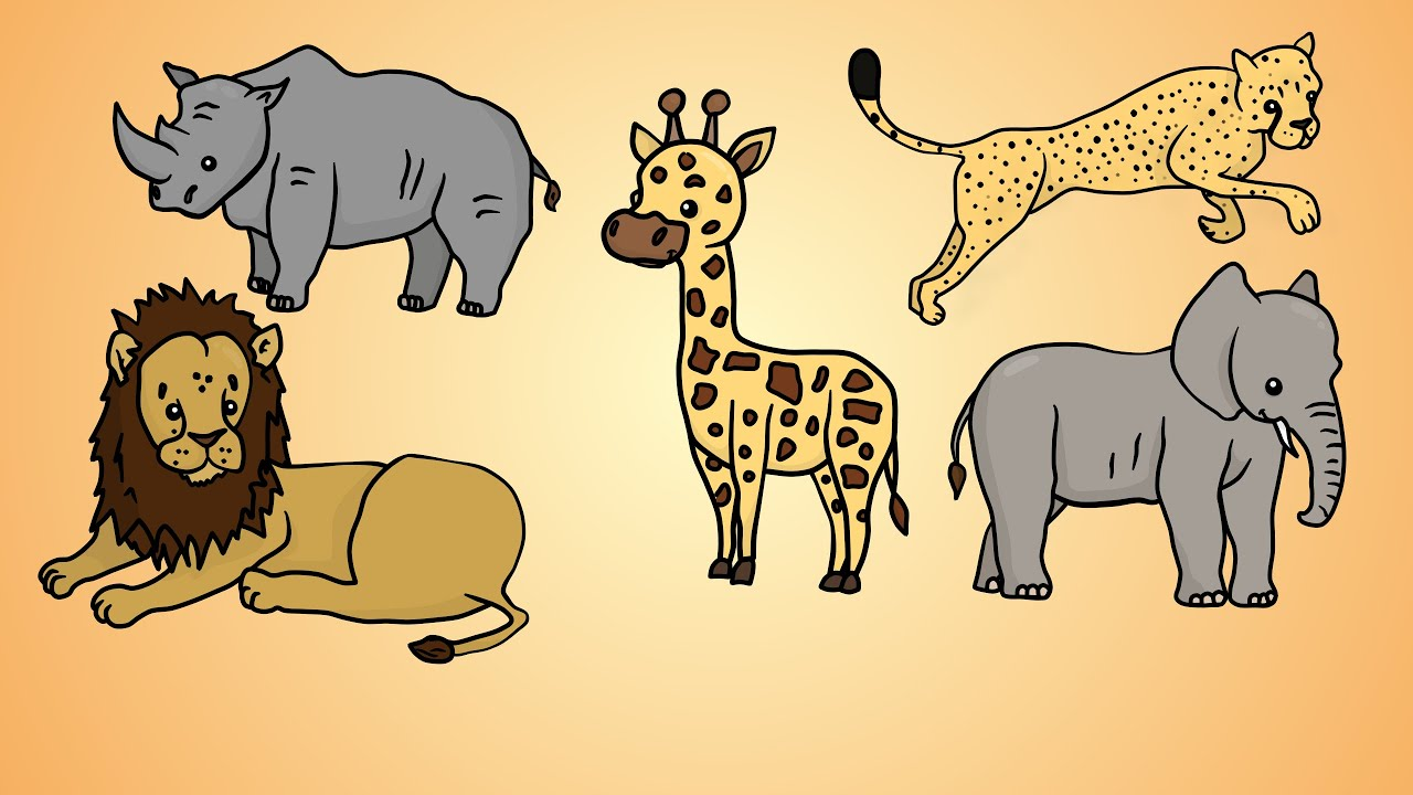 animals drawing wild african draw five animal getdrawings