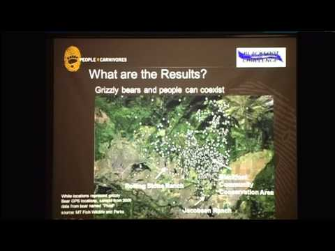 Reducing Human-Bear Conflicts in Rural Agricultural Communities - Dr. S. Wilson