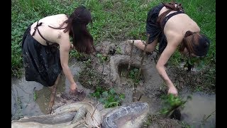 Wow! Catch alot of Fish - Catch Fish by Hand - Fishing in Cambodia
