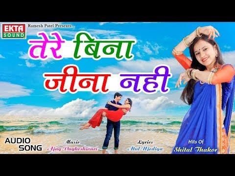 Shital Thakor    Tere Bina Jina Nahi    Hits Of Shital Thakor Hindi Songs    Ekta Sound