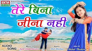 Shital Thakor || Tere Bina Jina Nahi || Hits Of Shital Thakor Hindi Songs || Ekta Sound
