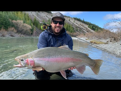 Catching Ridiculously Big MEGA TROUT On Fly!  [100lbs Landed]