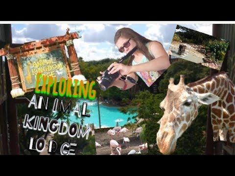 Exploring Animal Kingdom Lodge Disney November 2016 Part 39