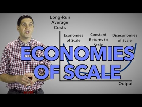 Economies Of Scale And Long-Run Costs- Micro Topic 3.3