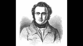Franz Schubert: Sinfonie Nr. 5 B-Dur D 485, II: Andante con moto