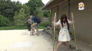 Япония. Поля Цветов и Мики на Ходулях