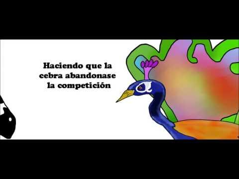 La Vanidad del pavo real, Tap de Suro Produccions