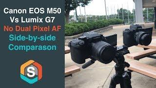 Is Dual Pixel Auto Focus a DEALBREAKER?  Field test comparison of the Lumix G7 vs Canon EOS M50