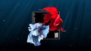 2. Shapeshifter vs The Upbeats [SSXUB] | Antipodes