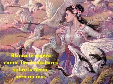 No hagas Fontanero Debería  Libre te quiero - Amancio Prada - YouTube