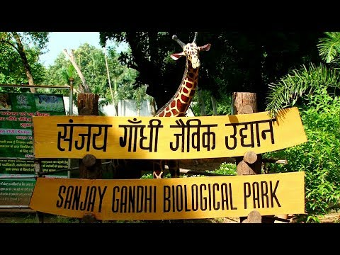संजय गाँधी जैविक उद्यान पटना , बिहार