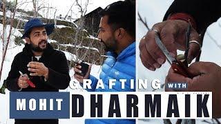 Grafting Tutorial with Mr. Mohit Dharmaik Ji | February 2019 | Lets Grow Apple