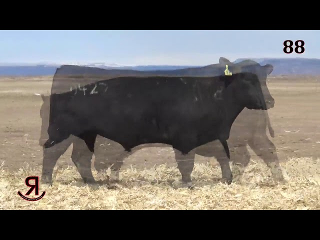 Reverse Rocking R Ranch Lot 88