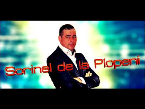 SORINEL DE LA PLOPENI - TRAGE CALU LA VALE 2016 Muzica de Petrecere