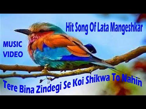 Tere Bina Zindagi Se Koi Shikwa To Nahin | Lata Mangeshkar,Kishore Kumar | Aandhi| Cover By Jayanti