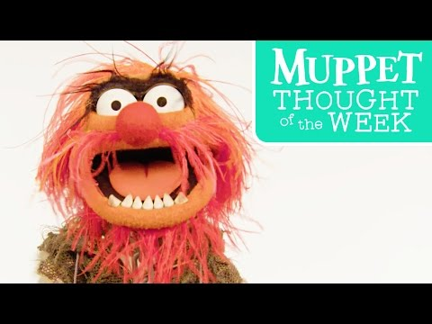 Muppet Thought of the Week feat. Animal | The Muppets