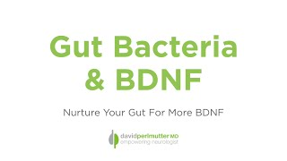 Gut Bacteria & BDNF