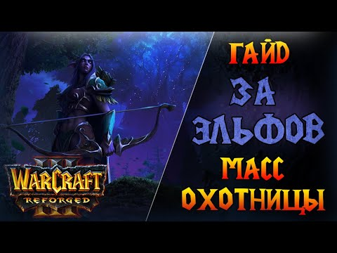 Warcraft 3 Reforged - Гайд за Ночных Эльфов \\ Самая простая стратегия - масс охотницы!
