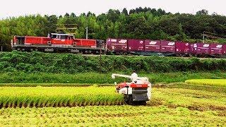 JR貨物 山陰本線迂回貨物列車 運行27日目 (24-Sep-2018)
