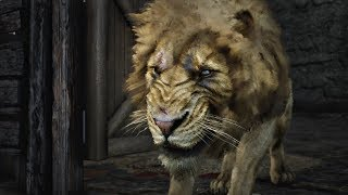 Red Dead Redemption 2 - Lion on Rampage Boss Battle (RDR2) PS4 Pro