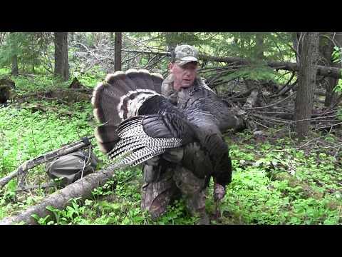 Turkey Hunting Spokane WA #53, John's 1st ID Tag