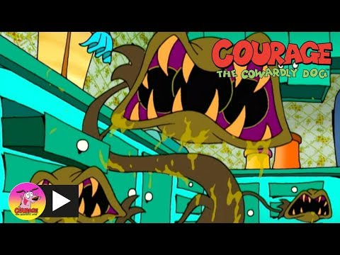 Courage the Cowardly Dog | Man Eating Plants | Cartoon Network