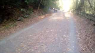 Wissahickon Valley Trail (Forbidden Drive) Philadelphia PA with 2013 Soca Mix by DJ Marfie