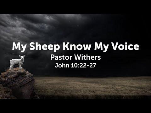 My Sheep Know My Voice (6/27/2021)