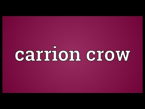 Carrion crow Meaning