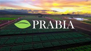 ¿Conoces el impacto económico de la industria de biotecnología agrícola?
