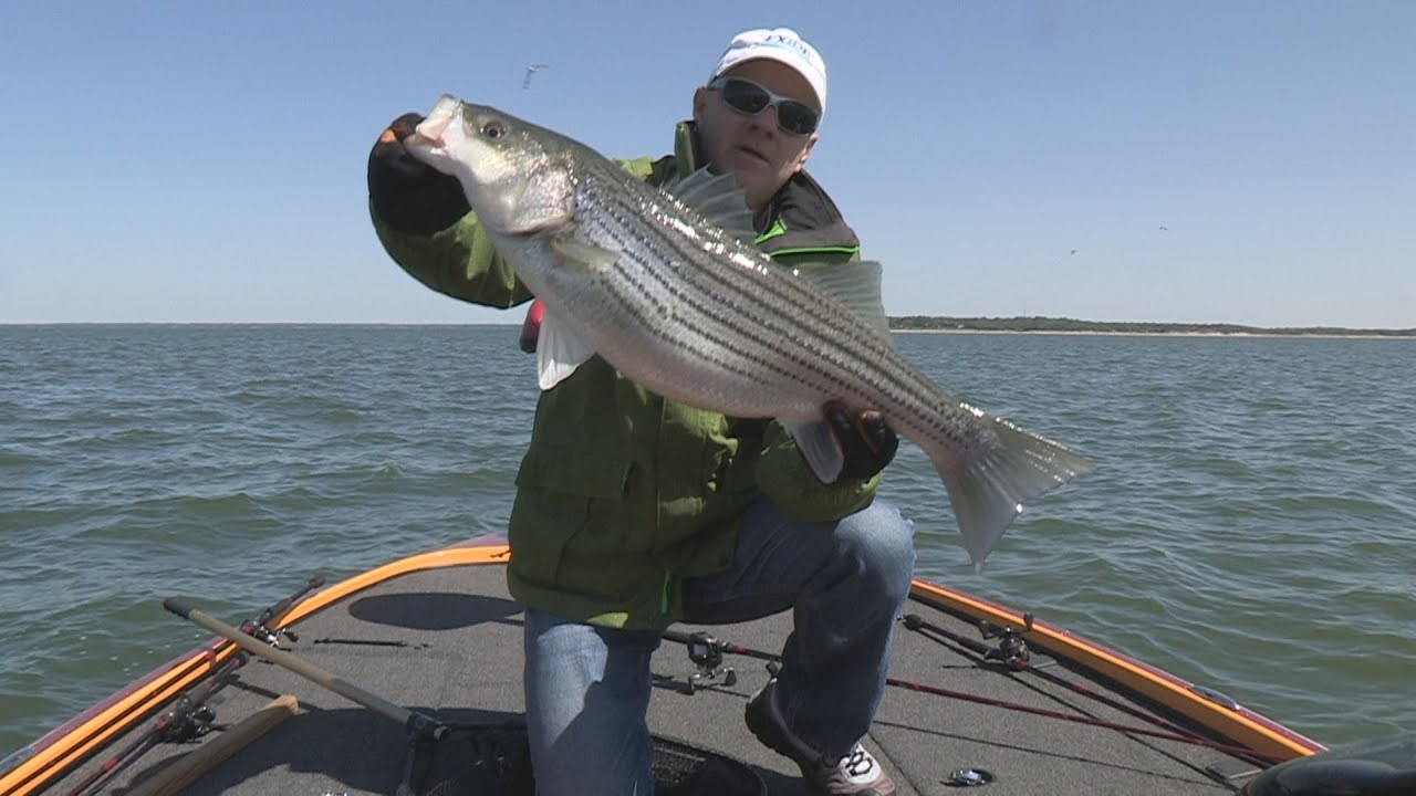 Bonus video 2013 episode 8 lake texoma oklahoma for Fishing forecast oklahoma