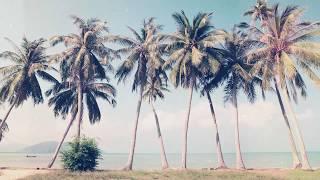 LET'S GO TO THE BEACH -  indie pop  surf pop  indie rock  lo-fi