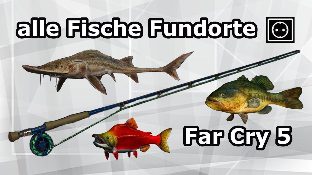 Far Cry 5 Fische