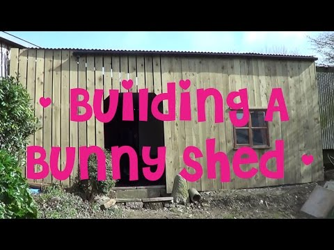 Building The New Bunny Shed | Shed Tour 🐰🐇