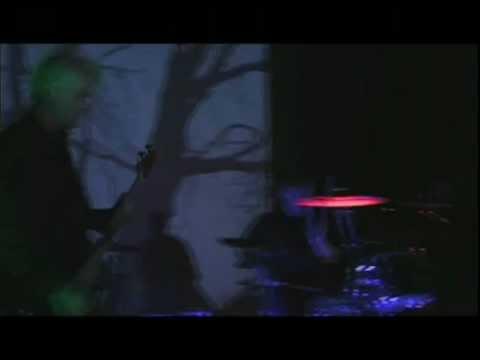Bella Morte - Find Forever Gone