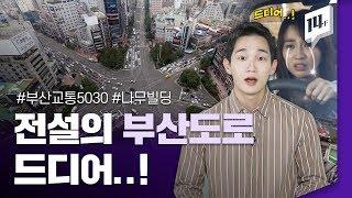 부산시 '안전속도 5030' 시행, 도로교통 바뀐다?  / 14F