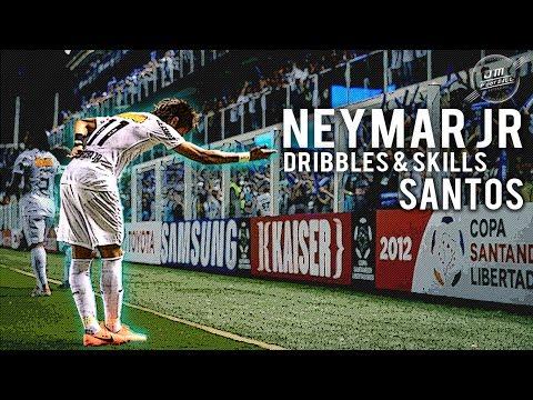 Neymar Jr | Dribbles & Skills Santos | HD