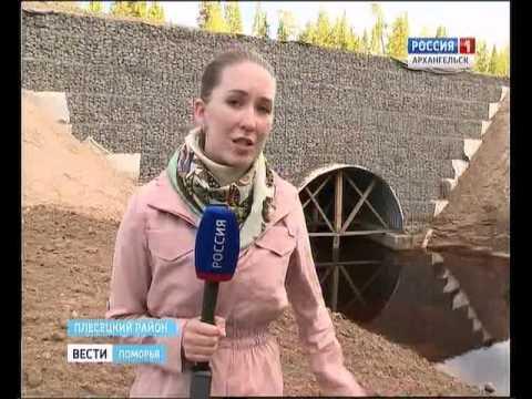 Возле посёлка Самодед в Плесецком районе начали асфальтировать 12-километровый участок трассы
