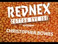 Cotton Eye Joe Featuring Christopher Bowes Of Alestorm mp3