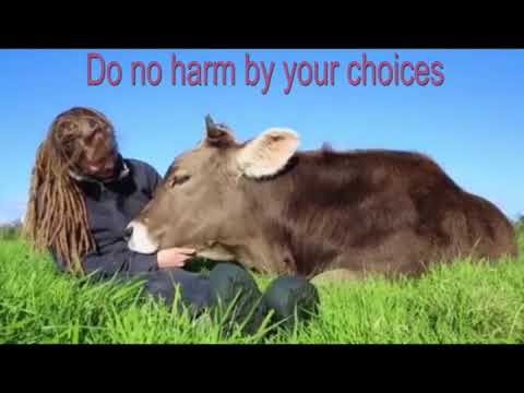 Do No Harm - Ahimsa