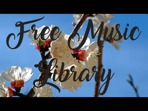 Royalty Free Music ♫ | One Fine Day - Audionautix