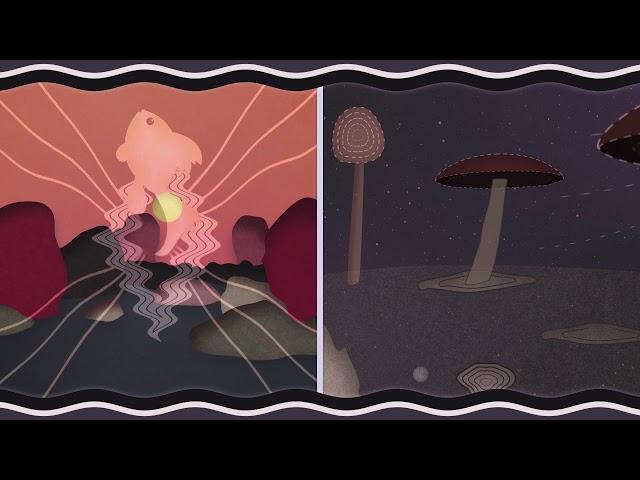 Molteplice - Marcello Zappatore - FD-Light-Project- [Official video 🎵 - Short Edit ]
