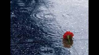 Download Creedence Clearwater Revival-¿Has visto alguna vez la lluvia? (traducido) MP3 song and Music Video