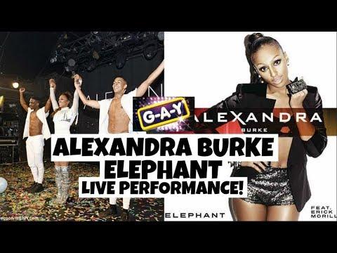 Alexandra burke elephant live webcam