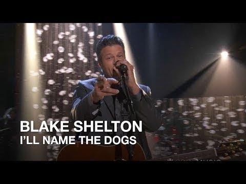 Blake Shelton - I'll Name The Dogs...