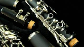 LJ Hutchen Clarinet with Hardshell Case Model 4216 thumbnail