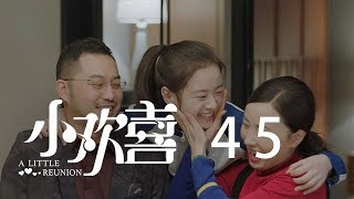 小歡喜 45 | A Little Reunion 45(黃磊、海清、陶虹等主演)