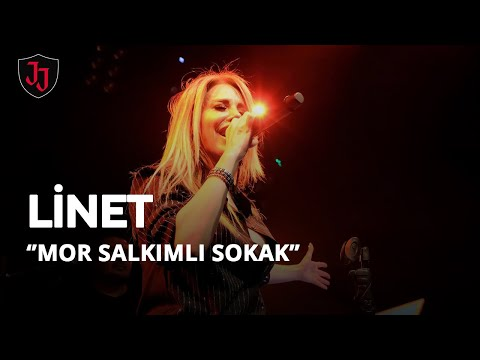 JOLLY JOKER ANKARA - LİNET - MOR SALKIMLI SOKAK